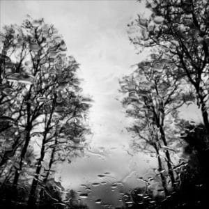 Après l'orage © Éléonore Mehl