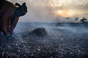 Sénégal © Romain Laurendeau