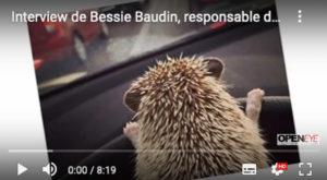interview Bessie Baudin