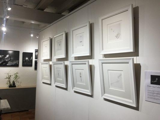 la place des Photographes- galerie1-3